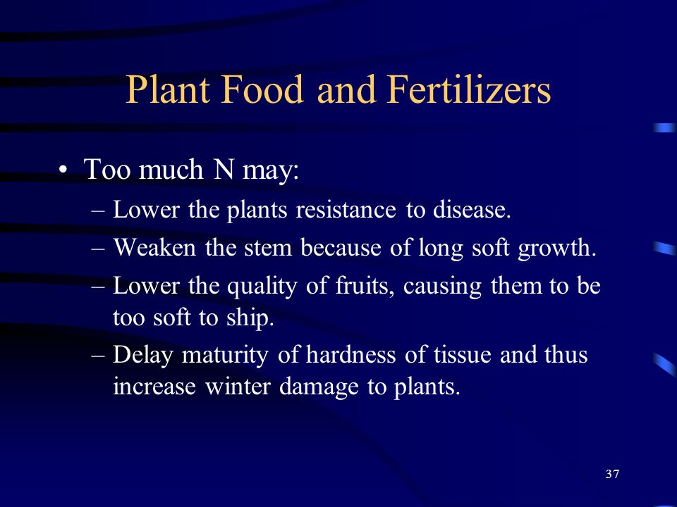 37 Plant Food and Fertilizers Too much N may: –Lower the plants resistance to disease. –Weaken the stem because of long soft growth. –Lower the qualit