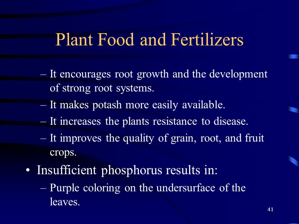 41 Plant Food and Fertilizers –It encourages root growth and the development of strong root systems. –It makes potash more easily available. –It incre