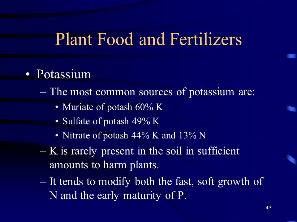 43 Plant Food and Fertilizers Potassium –The most common sources of potassium are: Muriate of potash 60% K Sulfate of potash 49% K Nitrate of potash 44% K and 13% N –K is rarely present in the soil in sufficient amounts to harm plants.
