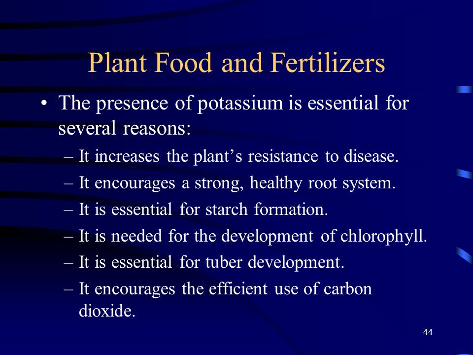 44 Plant Food and Fertilizers The presence of potassium is essential for several reasons: –It increases the plants resistance to disease.