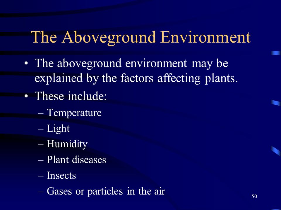 50 The Aboveground Environment The aboveground environment may be explained by the factors affecting plants. These include: –Temperature –Light –Humid