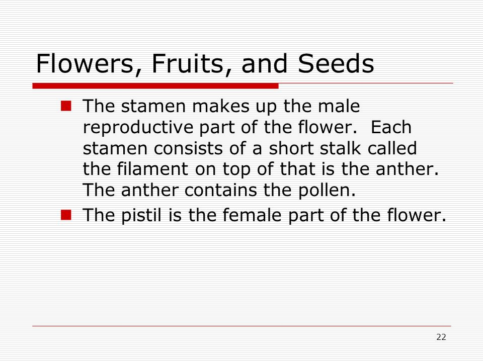 22 Flowers, Fruits, and Seeds The stamen makes up the male reproductive part of the flower. Each stamen consists of a short stalk called the filament