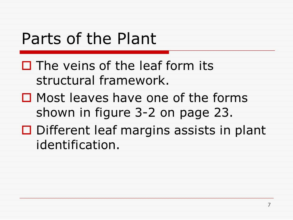 7 Parts of the Plant The veins of the leaf form its structural framework. Most leaves have one of the forms shown in figure 3-2 on page 23. Different
