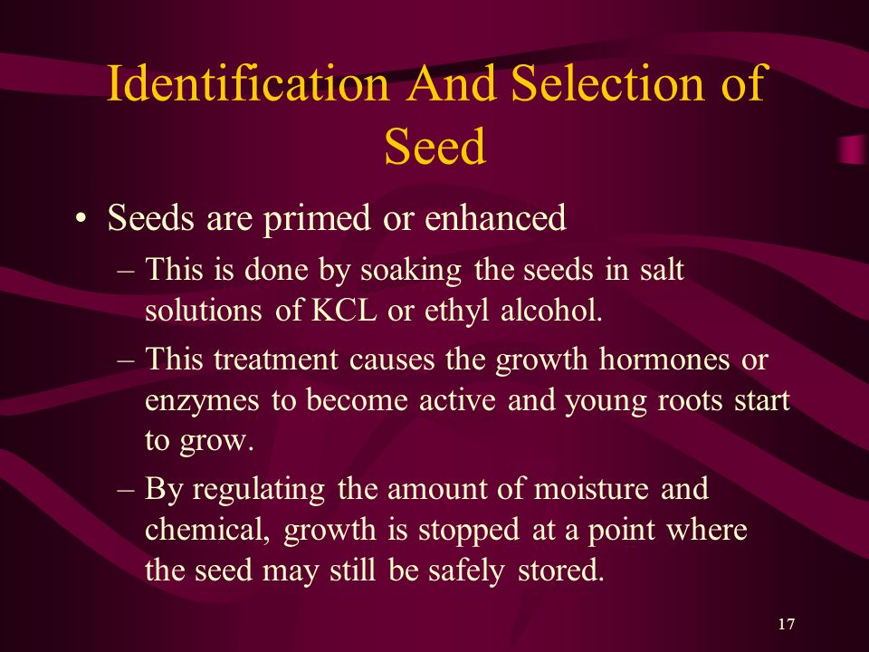 17 Identification And Selection of Seed Seeds are primed or enhanced –This is done by soaking the seeds in salt solutions of KCL or ethyl alcohol. –Th