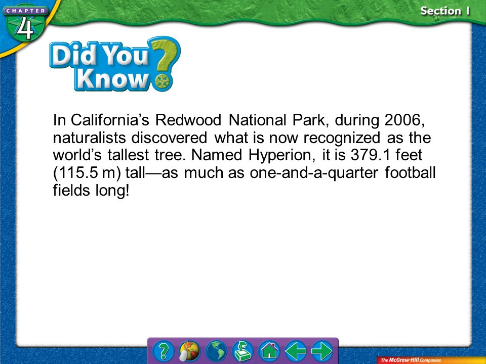 Section 1 In Californias Redwood National Park, during 2006, naturalists discovered what is now recognized as the worlds tallest tree. Named Hyperion,