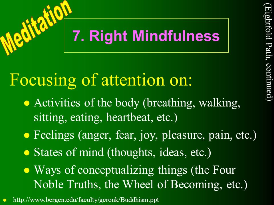 7. Right Mindfulness l Activities of the body (breathing, walking, sitting, eating, heartbeat, etc.) l Feelings (anger, fear, joy, pleasure, pain, etc