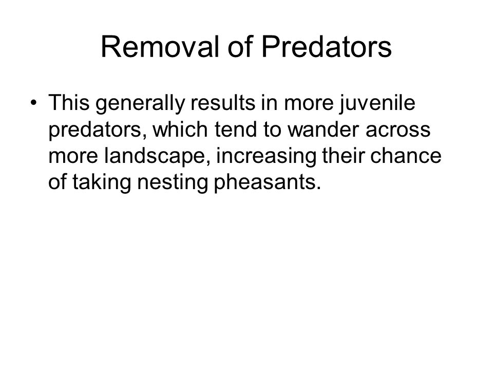 Removal of Predators This generally results in more juvenile predators, which tend to wander across more landscape, increasing their chance of taking