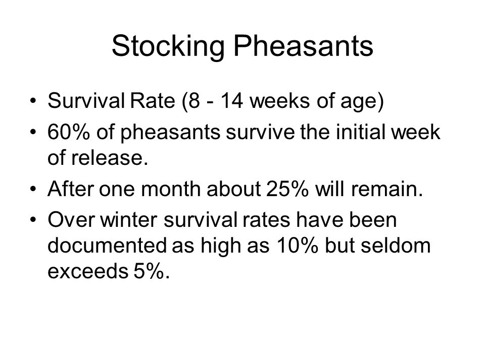 Stocking Pheasants Survival Rate (8 - 14 weeks of age) 60% of pheasants survive the initial week of release.