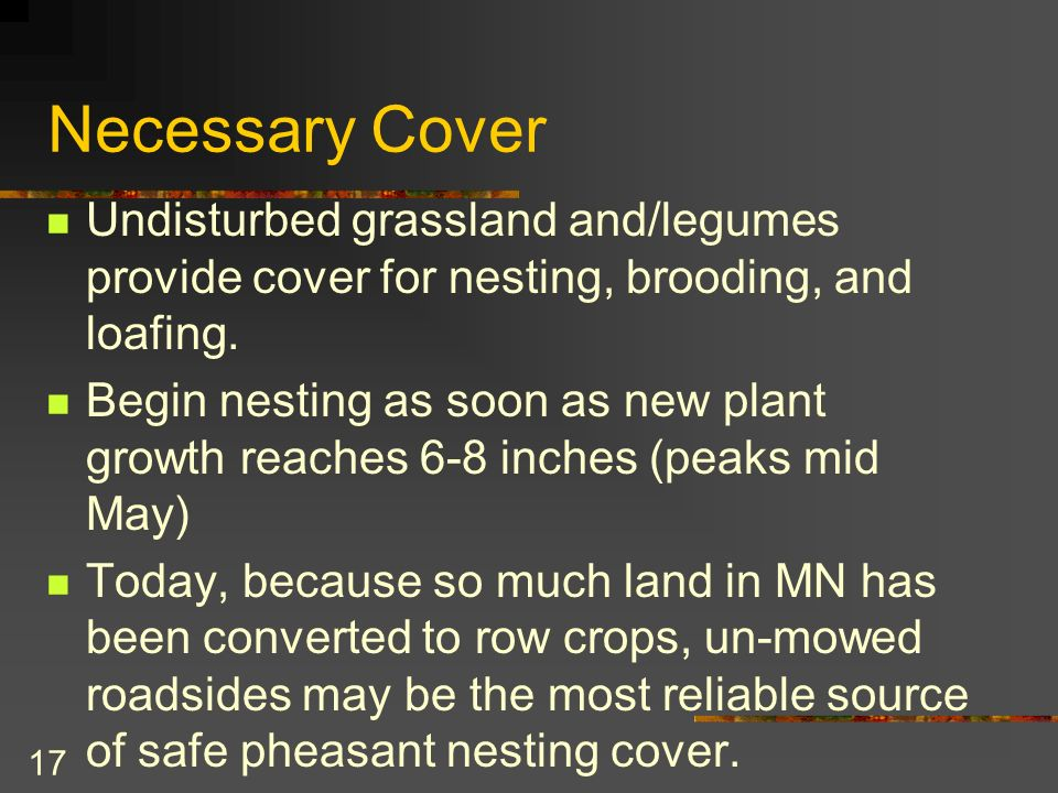 17 Necessary Cover Undisturbed grassland and/legumes provide cover for nesting, brooding, and loafing.