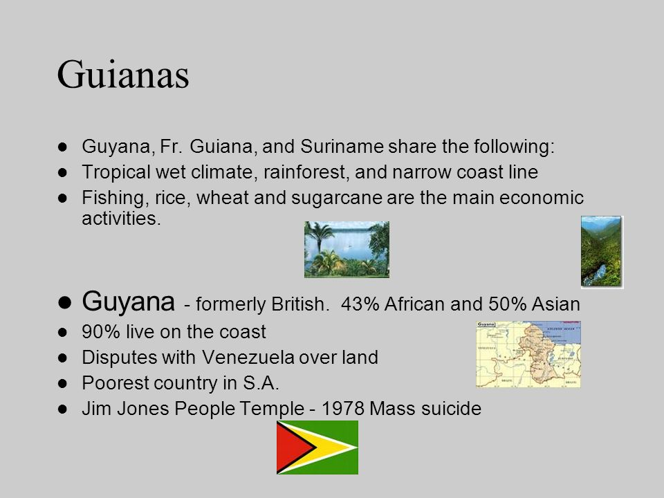 Guianas Guyana, Fr. Guiana, and Suriname share the following: Tropical wet climate, rainforest, and narrow coast line Fishing, rice, wheat and sugarca