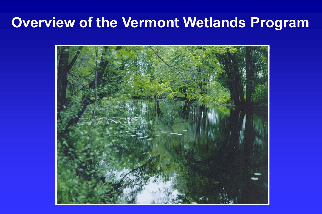 Vermont Statutory Overview Wetlands Section Overview Staffing and Resources Workload and Project Distribution Project Review Desk Review Field Visits CUD Process Recommendations Presentation Overview