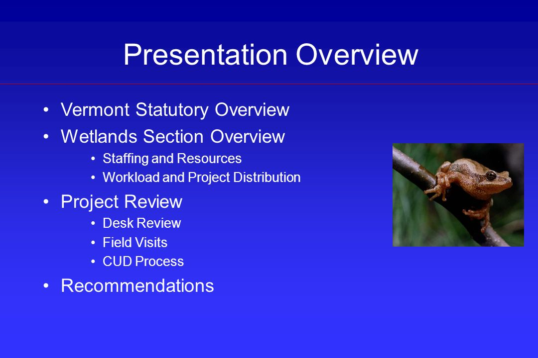 Vermont Statutory Overview Wetlands Section Overview Staffing and Resources Workload and Project Distribution Project Review Desk Review Field Visits