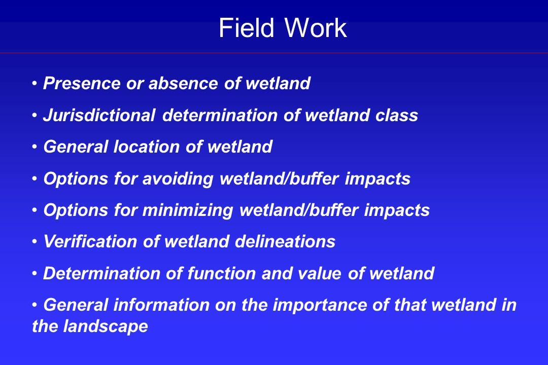 Field Work Presence or absence of wetland Jurisdictional determination of wetland class General location of wetland Options for avoiding wetland/buffe