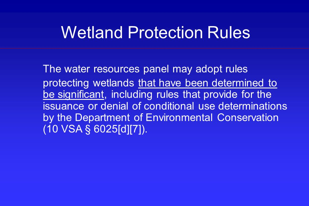 Wetland Protection Rules The water resources panel may adopt rules protecting wetlands that have been determined to be significant, including rules th