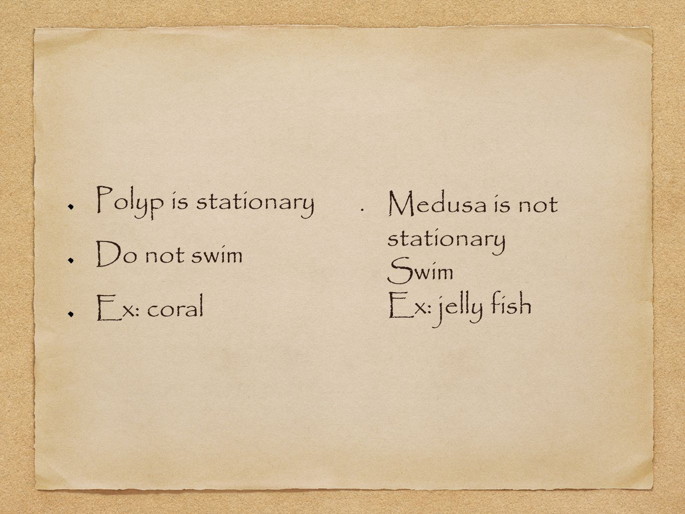 Polyp is stationary Do not swim Ex: coral Medusa is not stationary Swim Ex: jelly fish