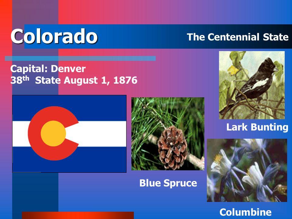 California Capital: Sacramento 31 st State September 9, 1850 Golden Poppy Redwood Valley Quail The Golden State