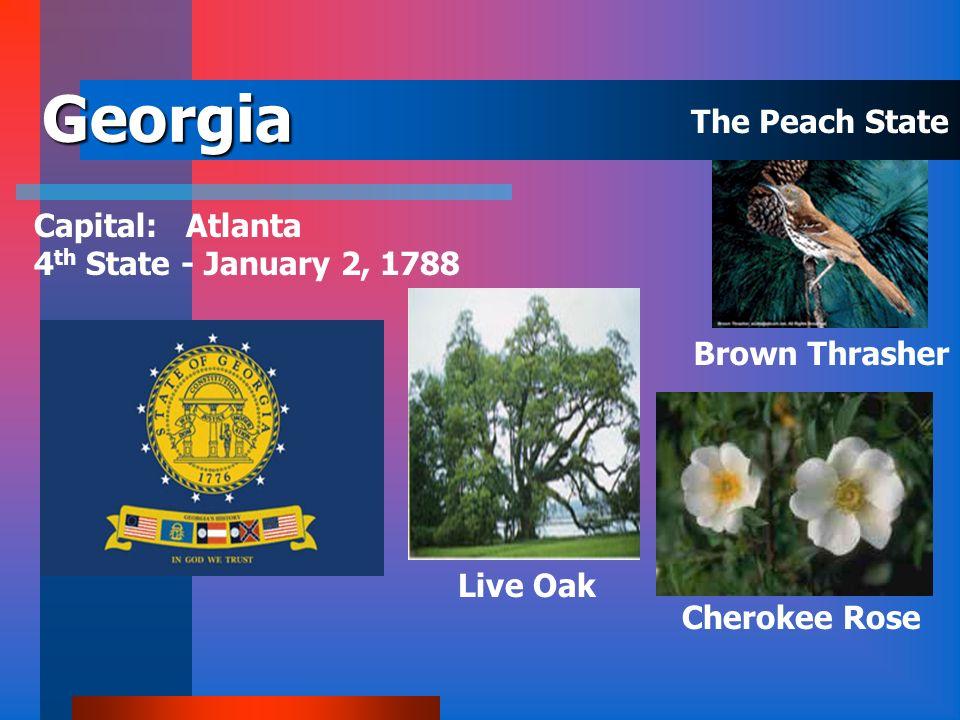 Florida Capital: Tallahassee 27 th State - March 3, 1845 Mockingbird Orange Blossom Sabal Palm The Sunshine State