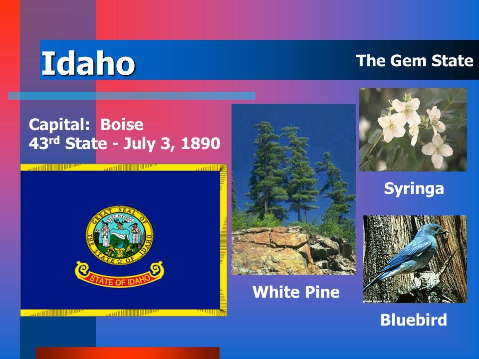 Hawaii Capital: Honolulu 50 th State - August 21, 1959 Yellow Hibiscus Nene Kukui The Aloha State