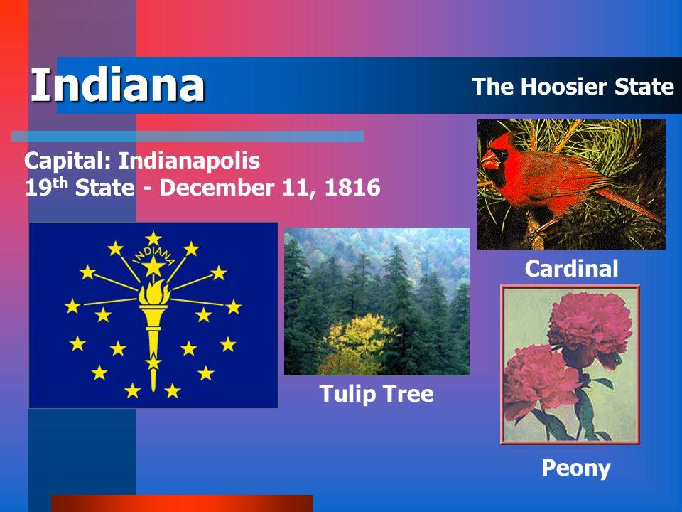 Illinois Capital: Springfield 21 st State - December 3, 1818 Violet White Oak Cardinal The Prairie State