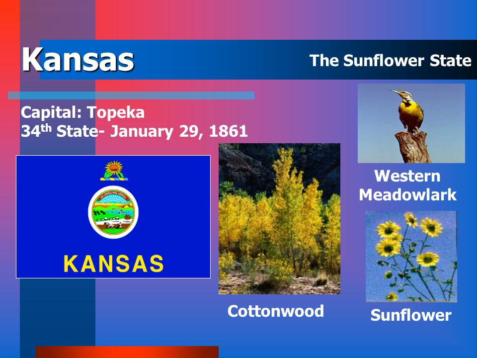 Iowa Capital: Des Moines 29 th State - December 28, 1846 Eastern Goldfinch Oak Wild Rose The Hawkeye State