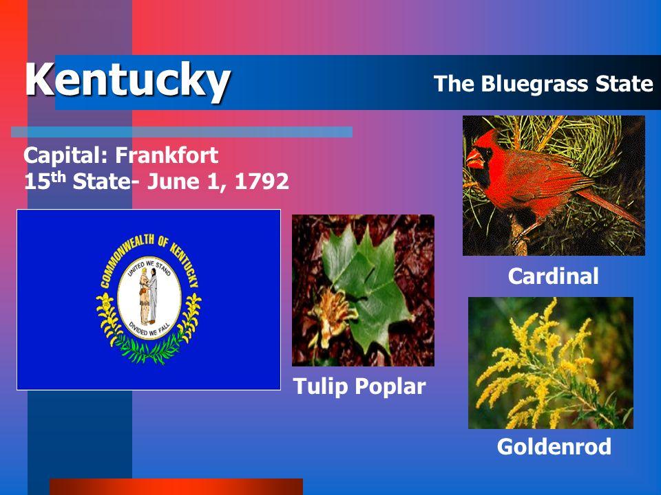 Kansas Capital: Topeka 34 th State- January 29, 1861 Cottonwood Western Meadowlark Sunflower The Sunflower State