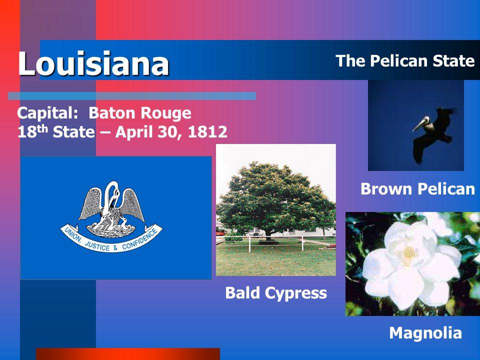 Kentucky Capital: Frankfort 15 th State- June 1, 1792 Cardinal Goldenrod Tulip Poplar The Bluegrass State