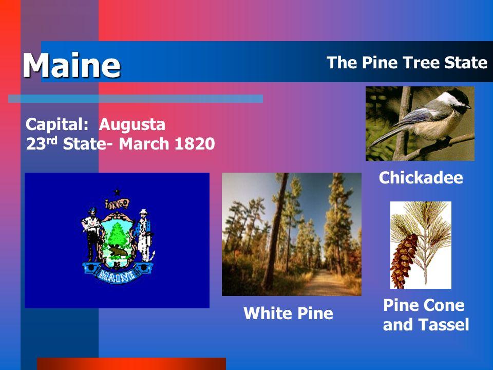 Louisiana Capital: Baton Rouge 18 th State – April 30, 1812 Bald Cypress Brown Pelican Magnolia The Pelican State