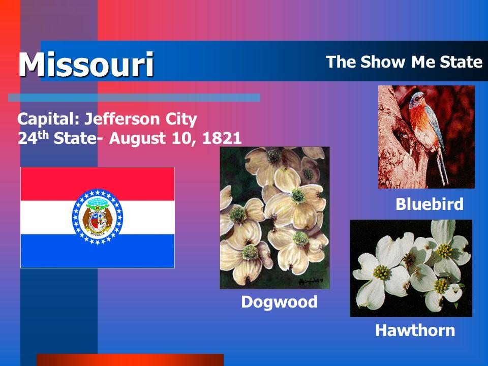 Mississippi Capital: Jackson 20 th State – December 10, 1817 Magnolia Mockingbird The Magnolia State