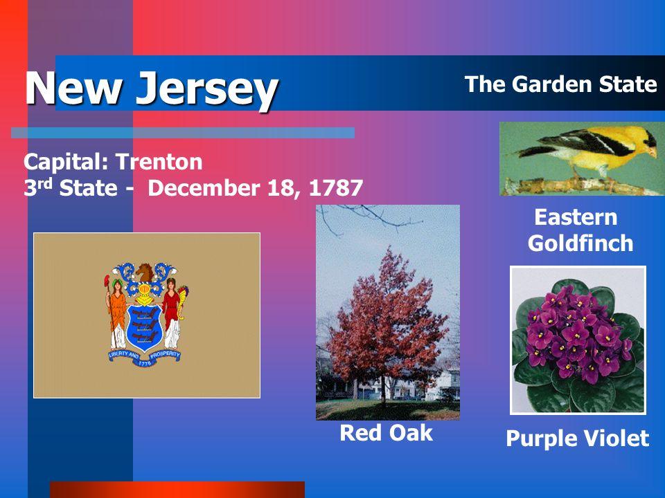 New Hampshire Capital: Concord 9 th State – June 21, 1788 Purple Lilac White Birch Purple Finch The Granite State