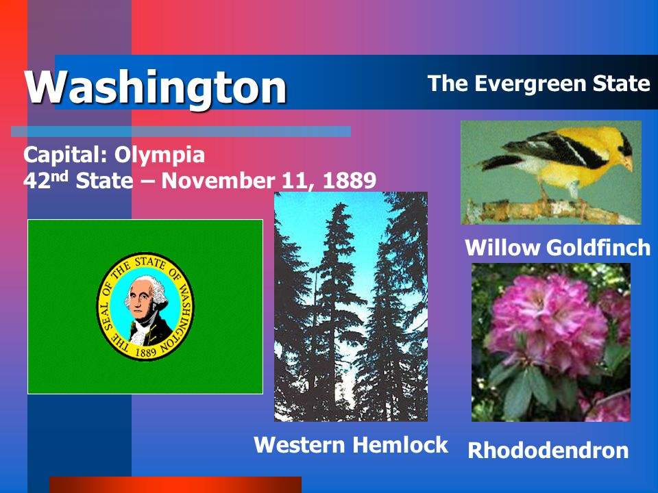 Virginia Capital: Richmond 10 th State June 25, 1788 Flowering Dogwood Cardinal The Old Dominion State