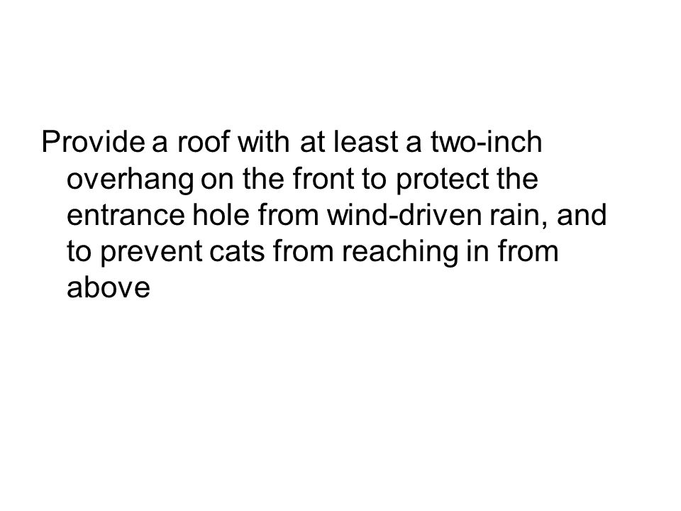 Provide a roof with at least a two-inch overhang on the front to protect the entrance hole from wind-driven rain, and to prevent cats from reaching in from above