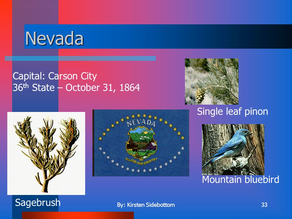 By: Kirsten Sidebottom32 Nebraska Capital: Lincoln 37 th State – March 1, 1867 Western meadowlark Goldenrod Cottonwood