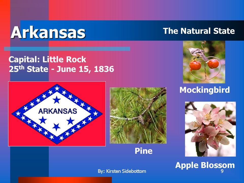 By: Kirsten Sidebottom39 North Dakota Capital: Bismarck 39 th State – November 2, 1889 Wild prairie rose American elm Western meadowlark