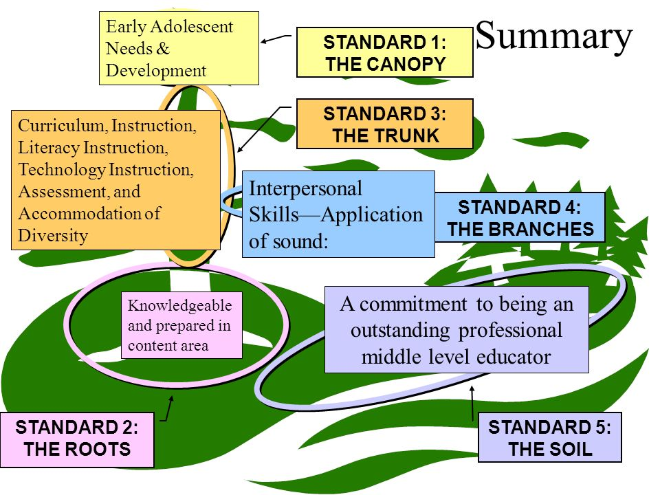 Summary STANDARD 1: THE CANOPY STANDARD 2: THE ROOTS STANDARD 3: THE TRUNK STANDARD 4: THE BRANCHES STANDARD 5: THE SOIL Early Adolescent Needs & Development Knowledgeable and prepared in content area Curriculum, Instruction, Literacy Instruction, Technology Instruction, Assessment, and Accommodation of Diversity Interpersonal SkillsApplication of sound: A commitment to being an outstanding professional middle level educator