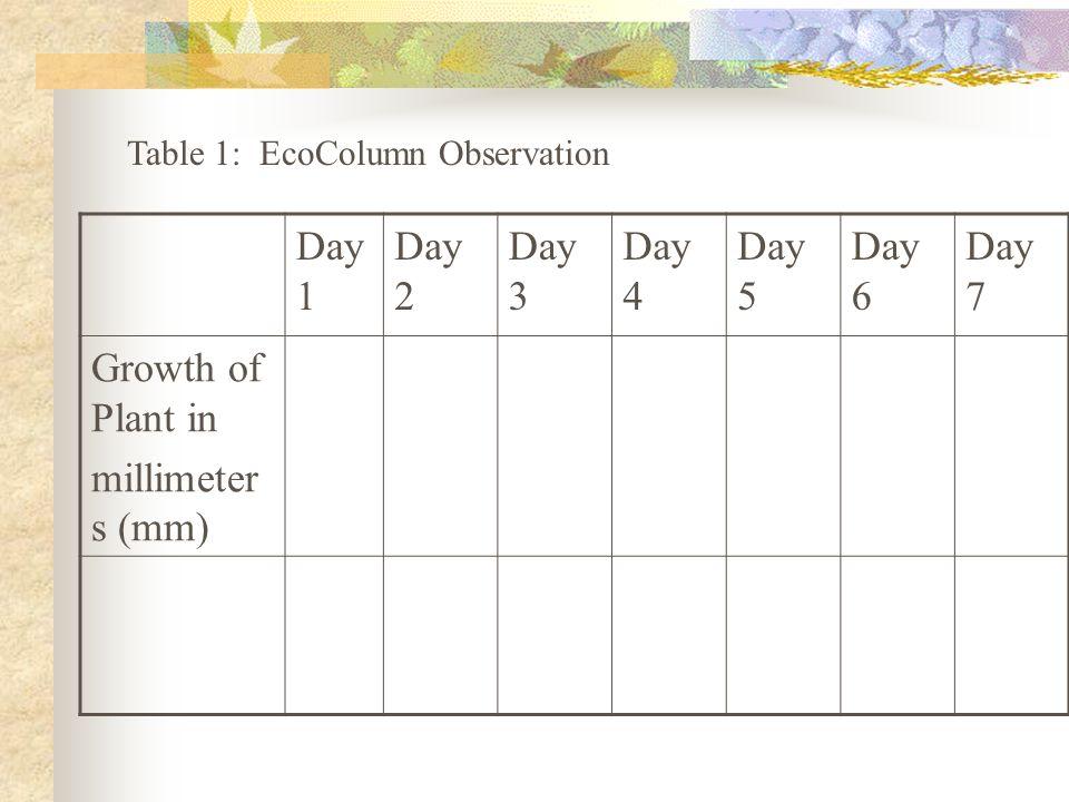 Day 1 Day 2 Day 3 Day 4 Day 5 Day 6 Day 7 Growth of Plant in millimeter s (mm) Table 1: EcoColumn Observation