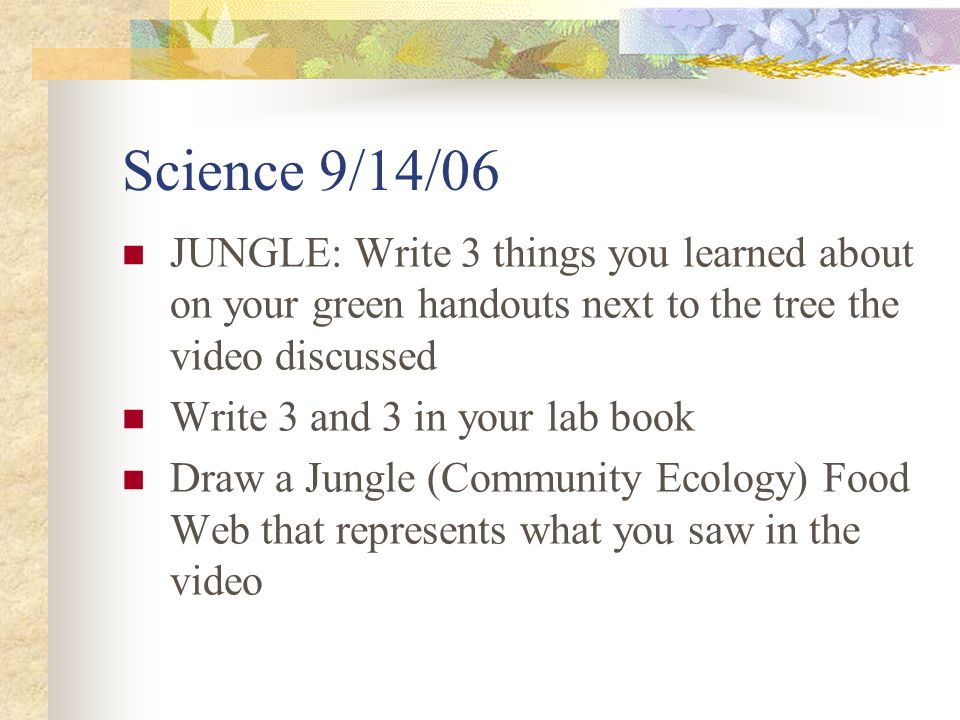 Science 9/14/06 JUNGLE: Write 3 things you learned about on your green handouts next to the tree the video discussed Write 3 and 3 in your lab book Draw a Jungle (Community Ecology) Food Web that represents what you saw in the video