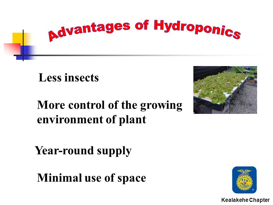 Less insects More control of the growing environment of plant Year-round supply Minimal use of space Kealakehe Chapter