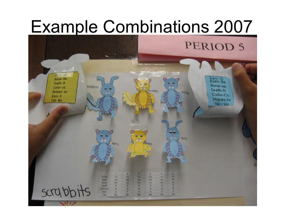 Example Combinations 2007