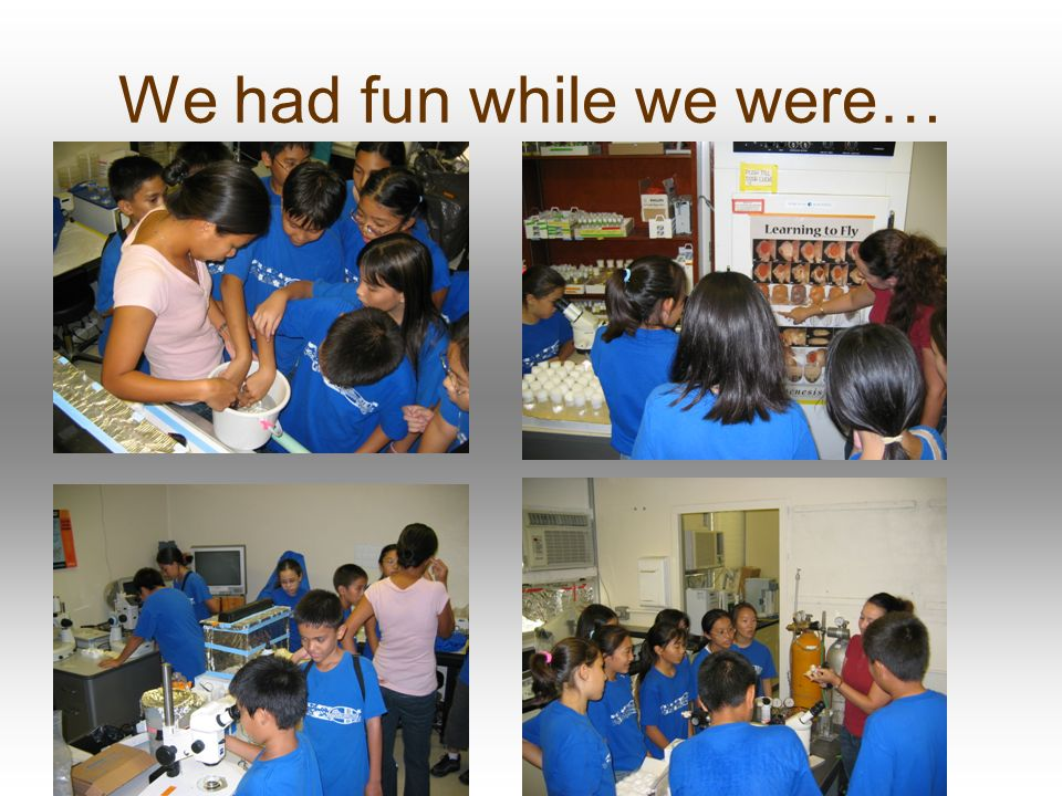 We had fun while we were…