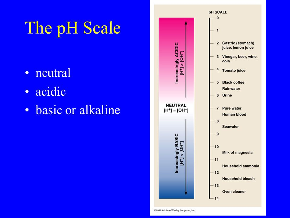 The pH Scale neutral acidic basic or alkaline
