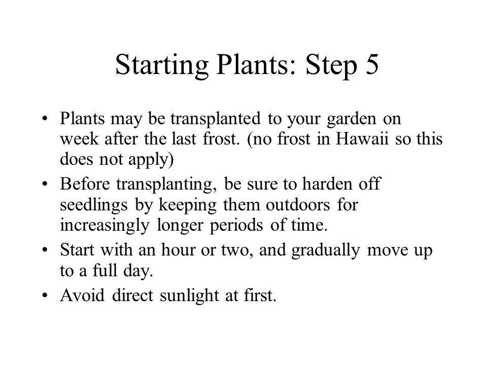 Starting Plants: Step 5 Plants may be transplanted to your garden on week after the last frost.