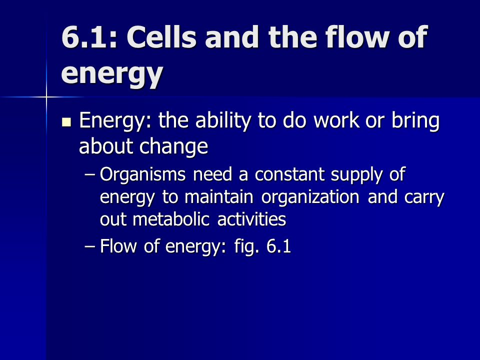 Chapter 6 Metabolism: Energy and Enzymes
