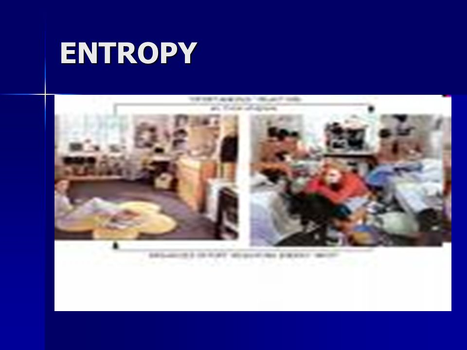 Cells and entropy Entropy: a relative amount of disorganization Entropy: a relative amount of disorganization Processes that occur in cells naturally