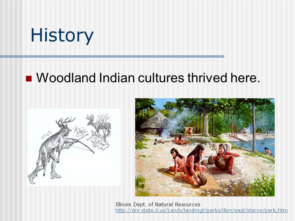 History Woodland Indian cultures thrived here. Illinois Dept.