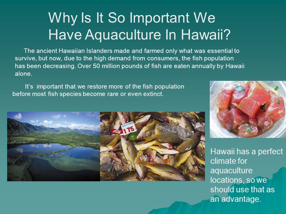 Aquaculture is growing plants or animals in salt, fresh or brackish water, It has been practiced with Hawaiian islanders and the Polynesians over 1000