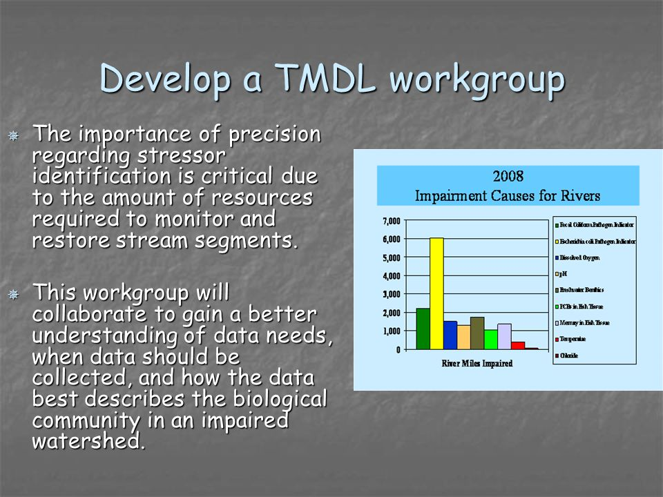 Develop a TMDL workgroup The importance of precision regarding stressor identification is critical due to the amount of resources required to monitor