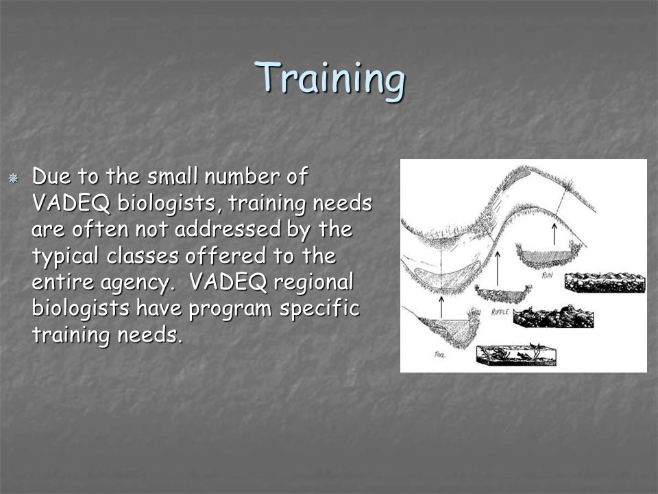 Training Due to the small number of VADEQ biologists, training needs are often not addressed by the typical classes offered to the entire agency. VADE