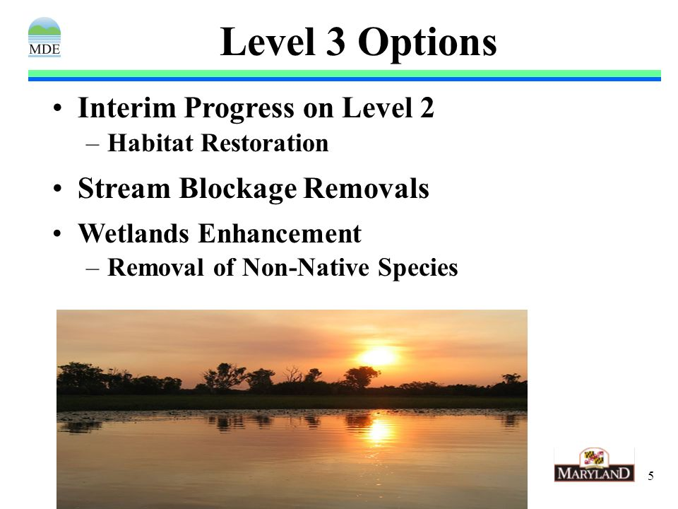 5 Level 3 Options Interim Progress on Level 2 –Habitat Restoration Stream Blockage Removals Wetlands Enhancement –Removal of Non-Native Species