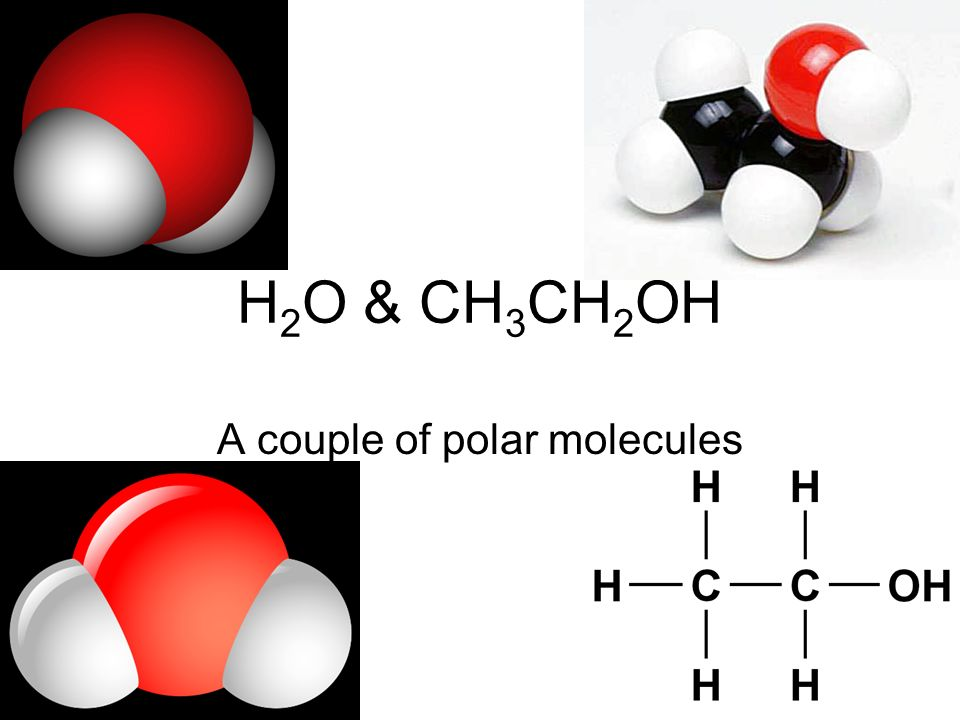 H 2 O & CH 3 CH 2 OH A couple of polar molecules