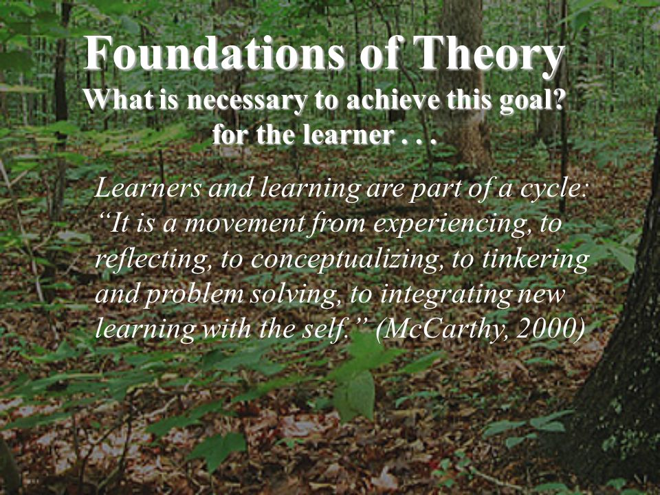 Foundations of Theory What is necessary to achieve this goal? for the learner... Learners and learning are part of a cycle: It is a movement from expe